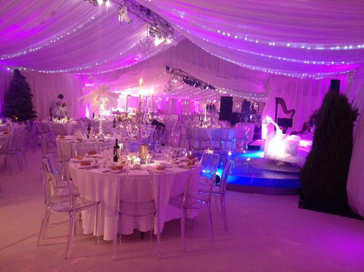 Party Tent with Lighting and Setup