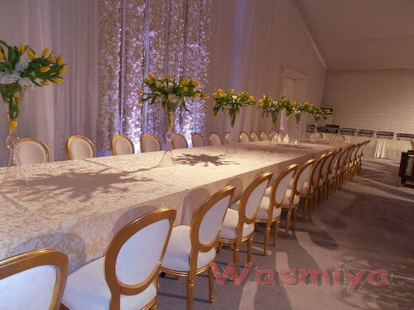 VIP Dior Chairs with complete setup